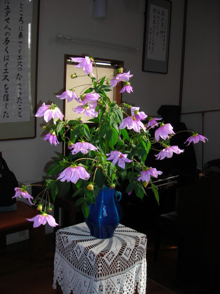 11月22日 講壇生花